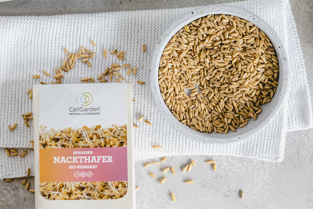 Bio-Keimsaat Nackthafer | 500 g