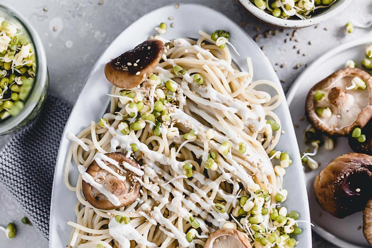 Spaghetti mit Cachewsauce und Mungbohnen Sprossen