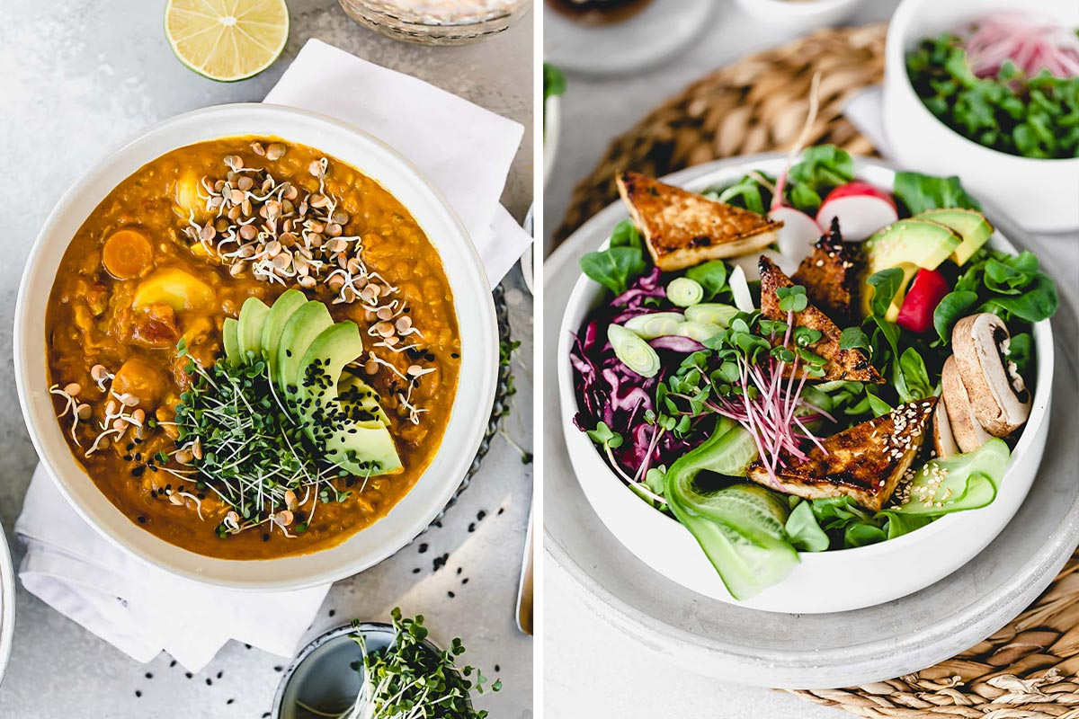Kochbuch Superfood Assistant | Kochen mit Sprossen & Microgreens